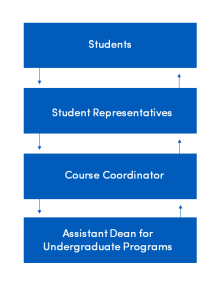 Flow chart of communications from students to student representatives to course coordinator to assistant dean for undergraduate programs.